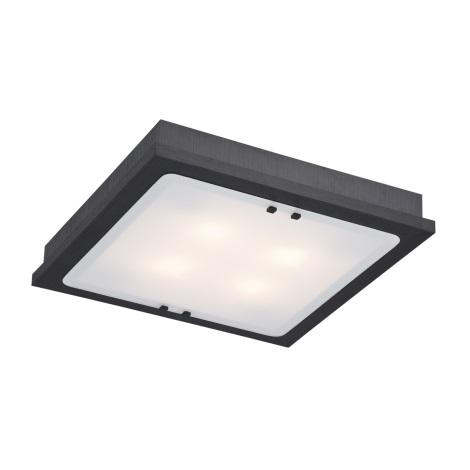 Argon 1583 - Stropní svítidlo TEQUILA 4xE27/60W/230V