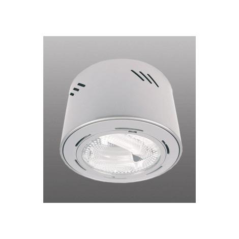Bodové svítidlo ECHO 218 2xPLC/18W stříbrná