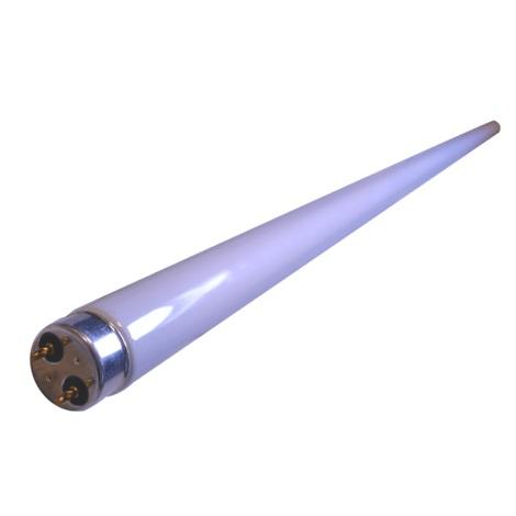 Eglo 10664 - Zářivková trubice T8/30W/230V