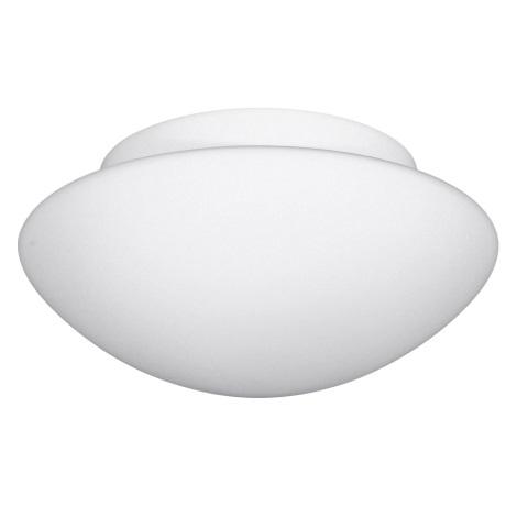 Koupelnové nástěnné stropní svítidlo SANTE 1xE27/60W/230V