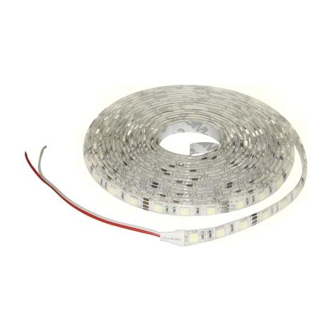 LED pásek STRIP 5m studená bílá - GXLS064