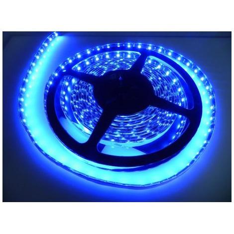 LED pásek vodotěsný 5m IP65 modrá - GXLS014