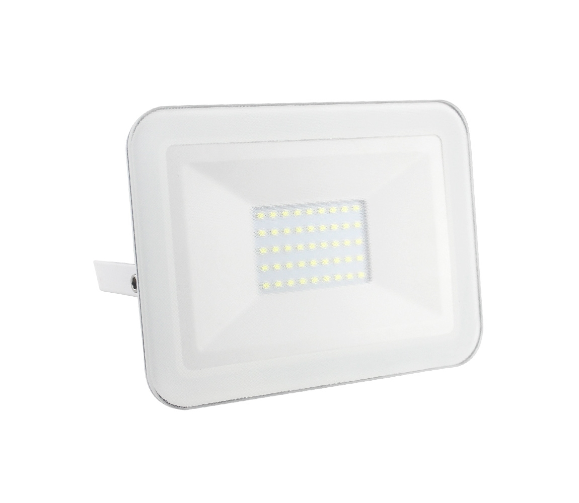 Nedes LED Reflektor LED/30W/230V IP65 ND3135