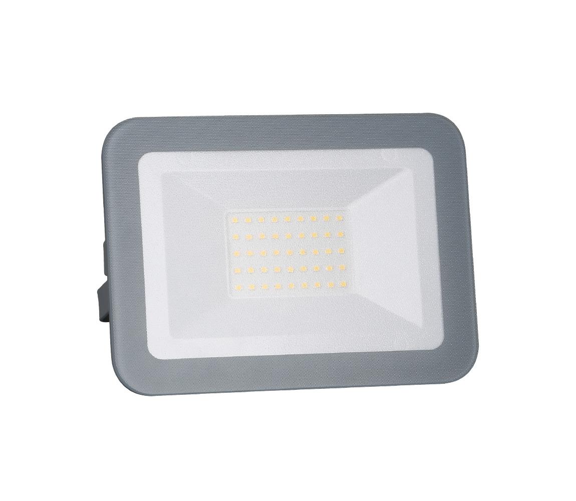 Nedes LED Reflektor LED/30W/230V IP65 ND3136