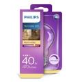 LED Stmívatelná žárovka VINTAGE Philips E27/5,5W/230V 2700K