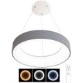 LED Stmívatelný lustr na lanku NEST LED/40W/230V 3000-6500K šedá