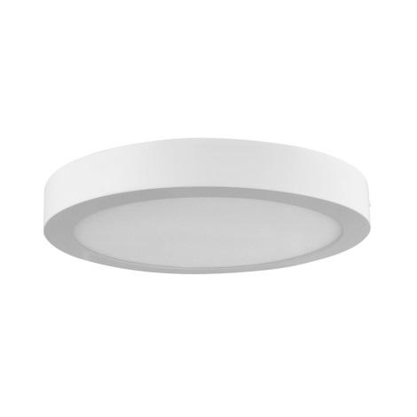 LED stropní svítidlo MARS LED/18W/230V