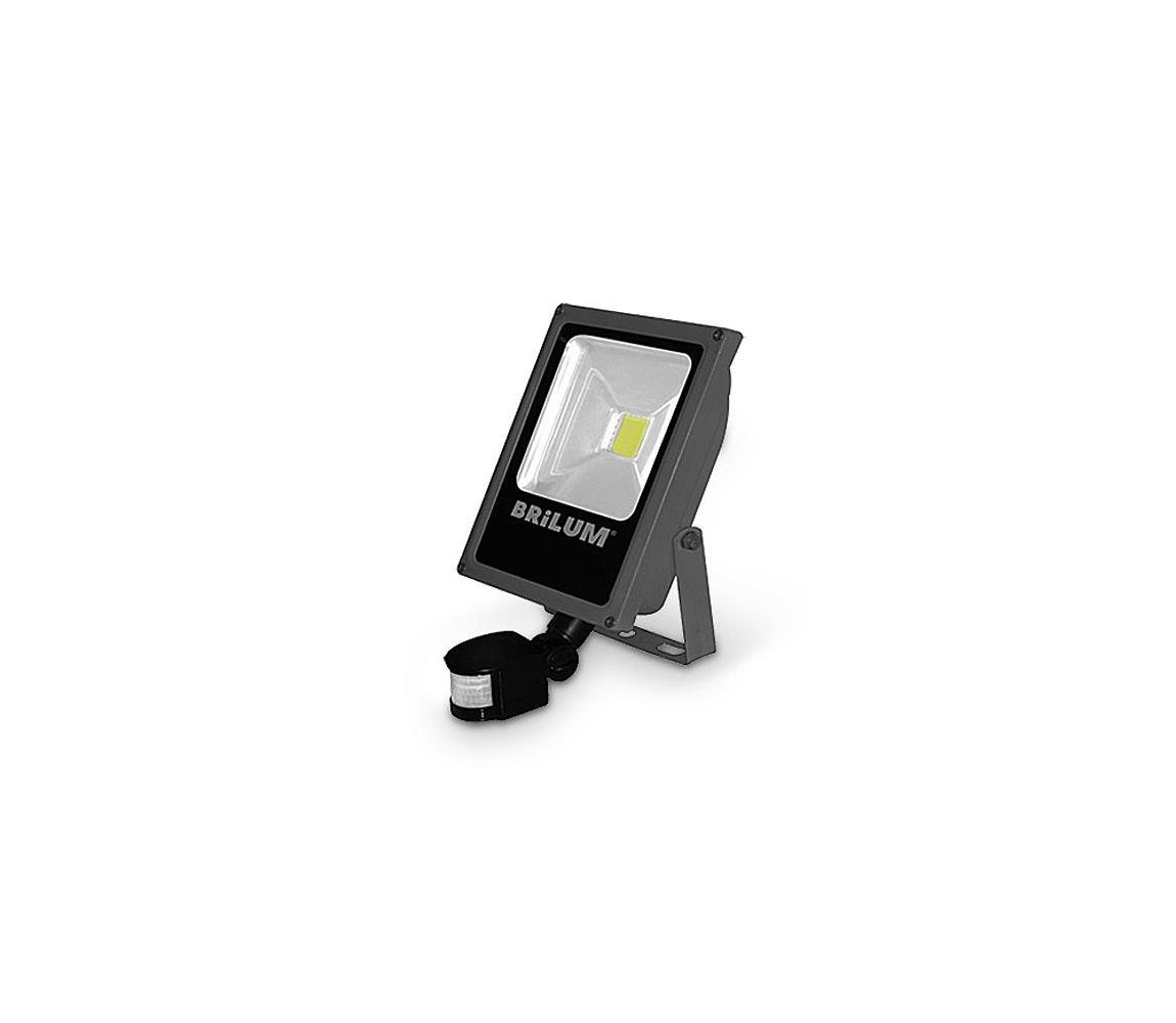 Brilum LED Venkovní reflektor se senzorem LED/30W/230V IP65 B1288
