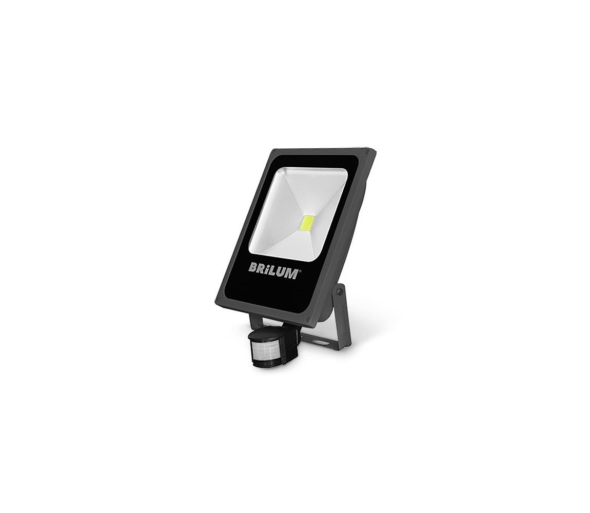 Brilum LED Venkovní reflektor se senzorem LED/50W/230V IP65 B1322