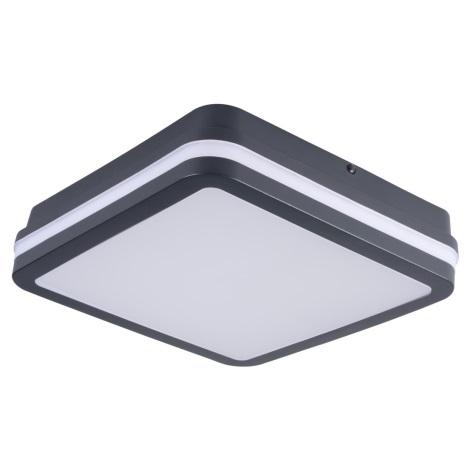 LED Venkovní svítidlo se senzorem BENO LED/24W/230V 4000K antracit IP54