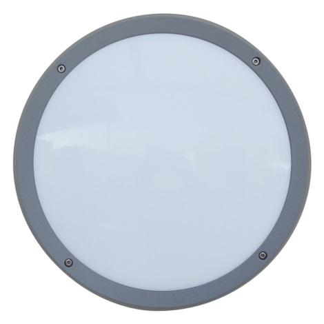 Luxera 48308 - Venkovní nástěnné svítidlo s čidlem NUVOLA 30xLED SMD/13,5W/230V