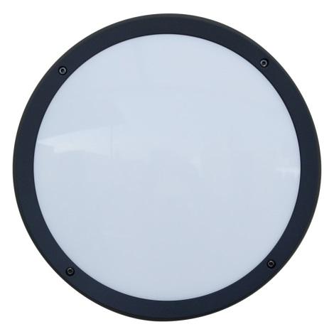 Luxera 48309 - Venkovní nástěnné svítidlo s čidlem NUVOLA 30xLED SMD/13,5W/230V