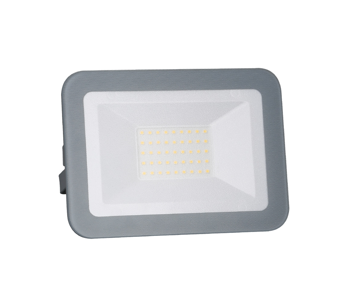 Nedes Nedes LF2223 - LED Reflektor LED/30W/230V IP65 ND3136