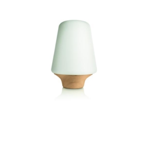 Philips 40802/72/16 - Stolní lampa 1xE27/12W