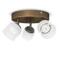 Philips 53333/06/16 - LED bodové svítidlo FREMONT 3xLED/4W/230V
