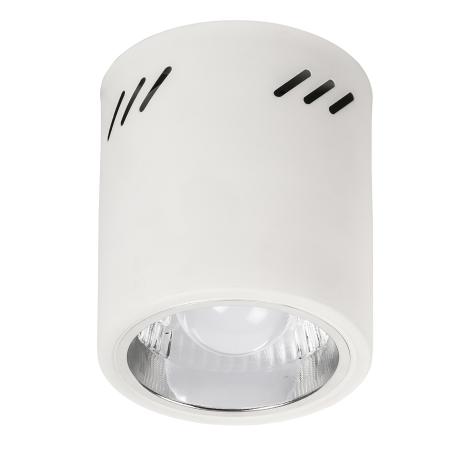 Rabalux 2484 - Podhledové svítidlo DONALD 1xE27/60W/230V