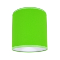 Stropní svítidlo 1xE27/60W/230V zelená