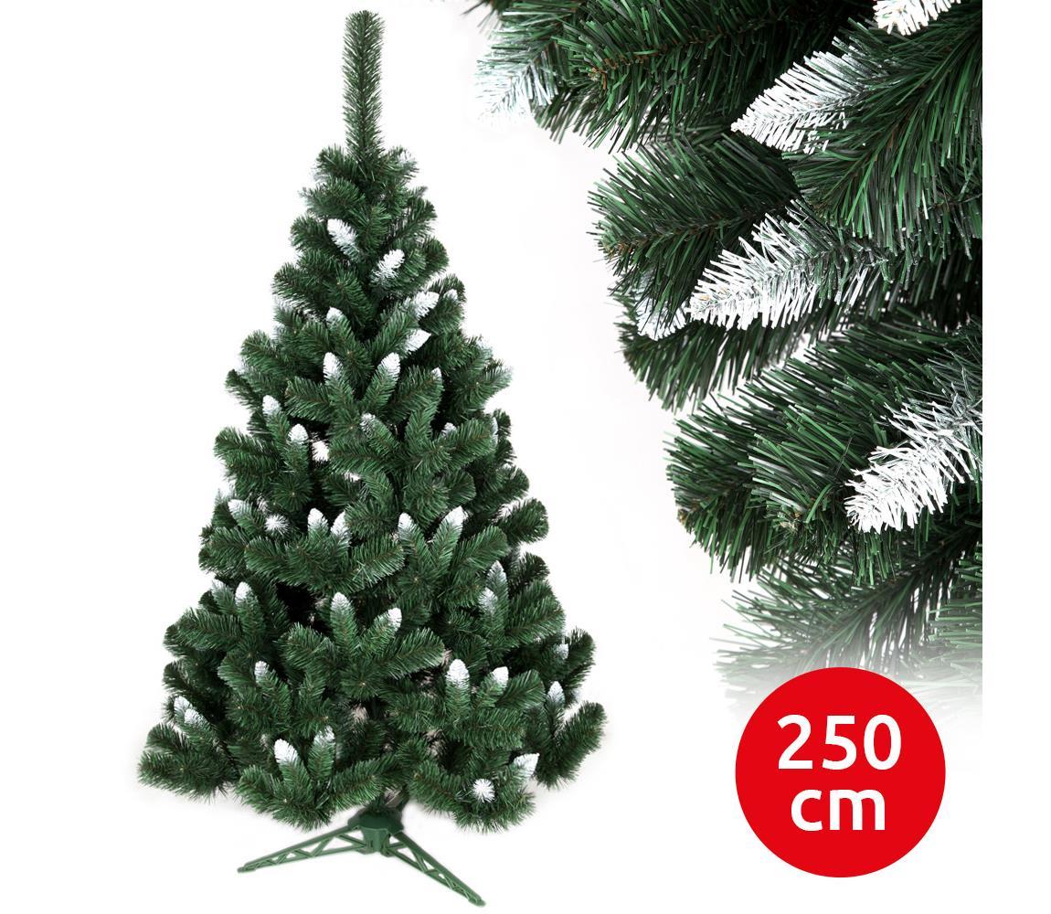 ANMA Vánoční stromek NARY I 250 cm borovice AM0109