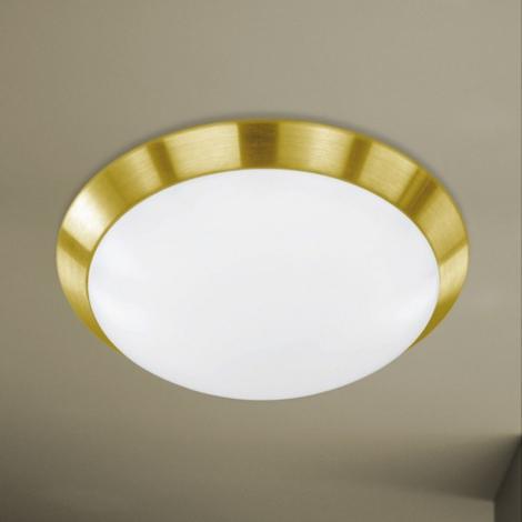 Wofi 987601320330 - LED stropní svítidlo MARA LED/18,5W/230V